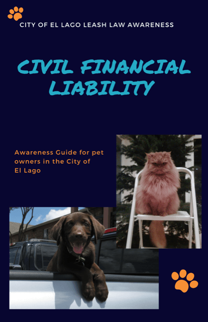 Financial Liability 1
